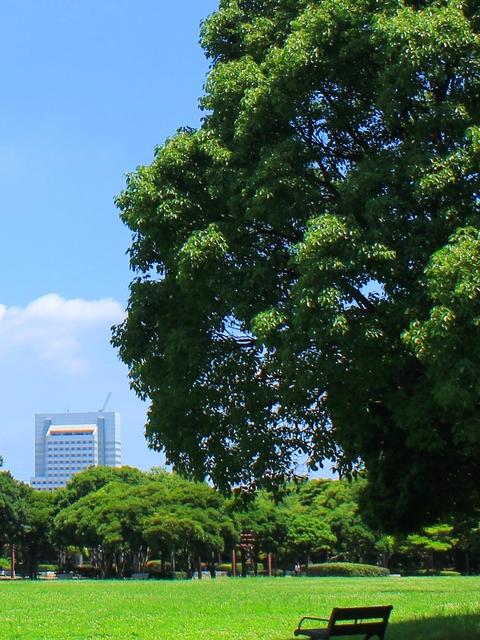 市街化調整区域の建築許可申請